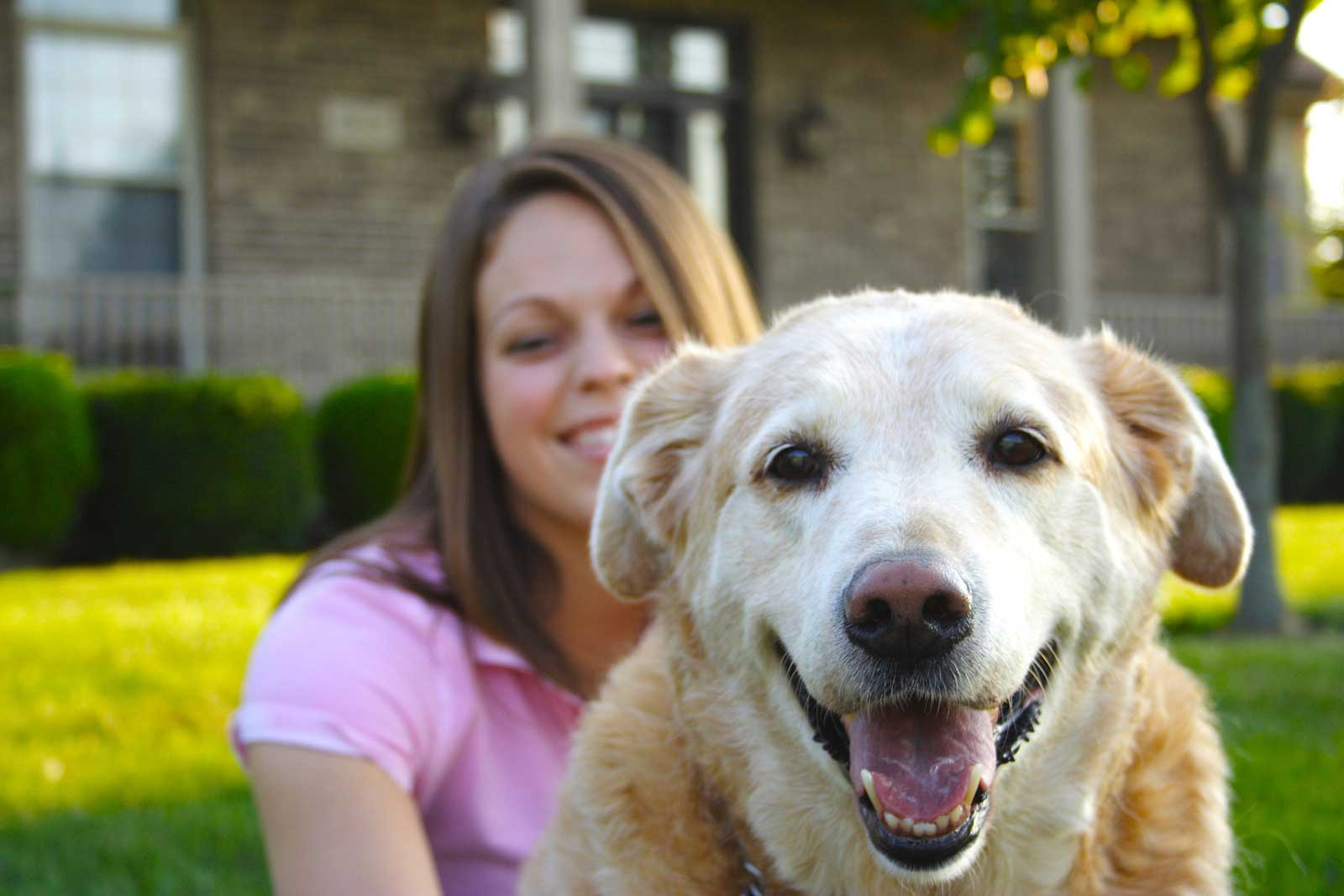 Pet Insurance 101: What Is It and Does My Pet Need It?